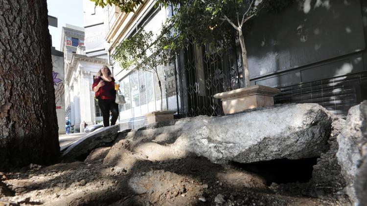 ECSWANDC Makes The Press About Sidewalks