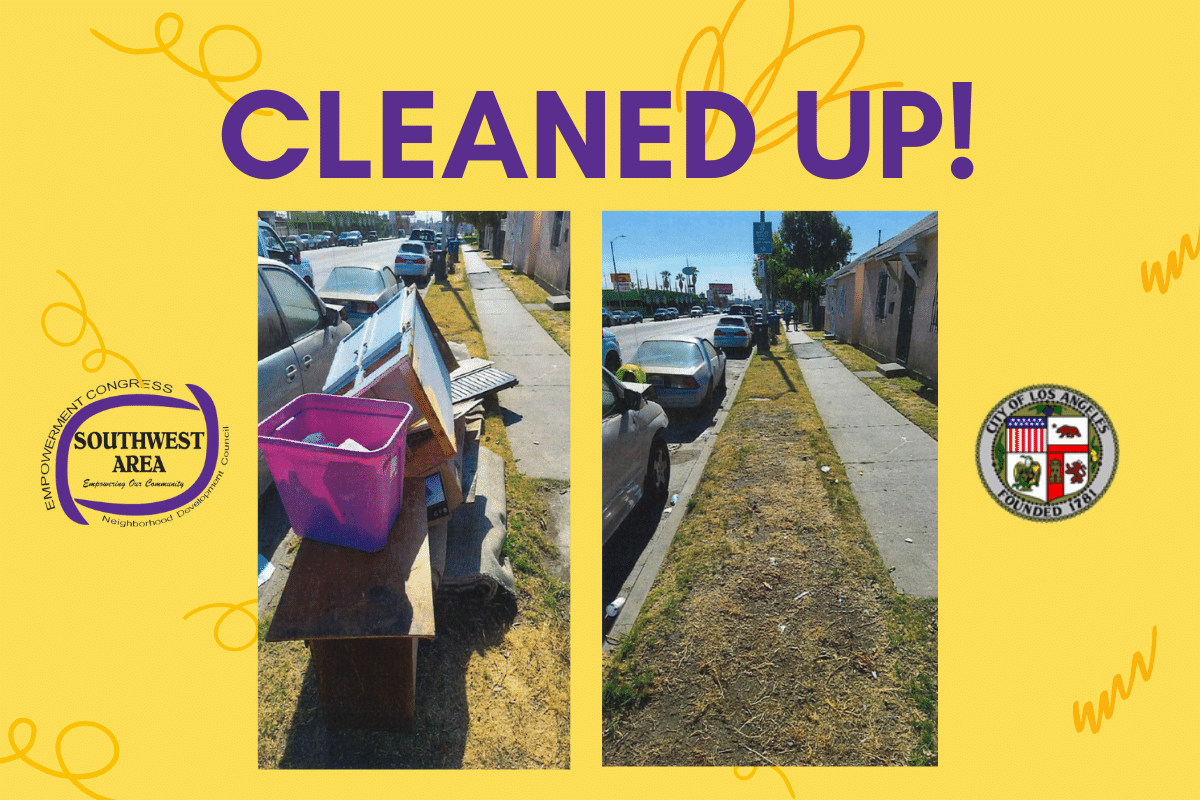 ECSWANDC Funds Community Cleaning Crew